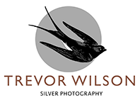Silver Photography Logo 200px