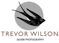 Silver Photography Logo Mobile